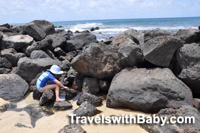 Little kid watches for fish as the tide flushes through the rocks at Poipu Beach Park, Kauai