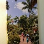 Canvas photo enlargement from Kauai trip.